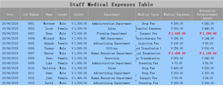 Staff Medical Expenses Table.xls